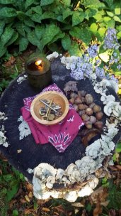 Personal offering in the forest at SweetWood